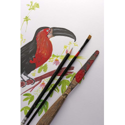 Carnet Paint On Mixed Media A5 - 64 Pages - 250G - Rouge - Clairefontaine | Surdiscount